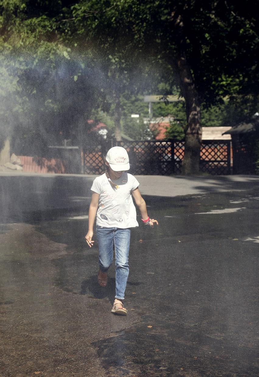 kurtyna wodna w zoo