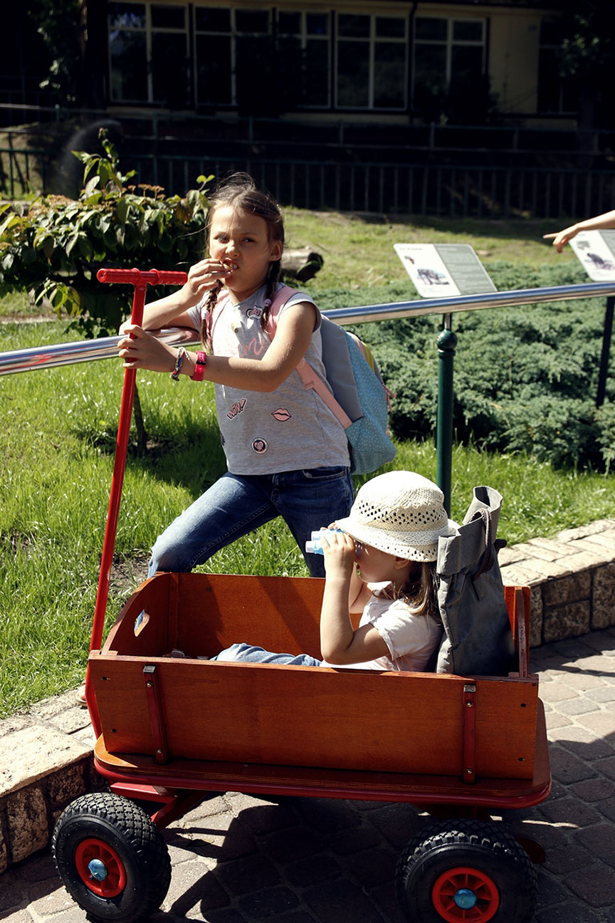 zoo wózek