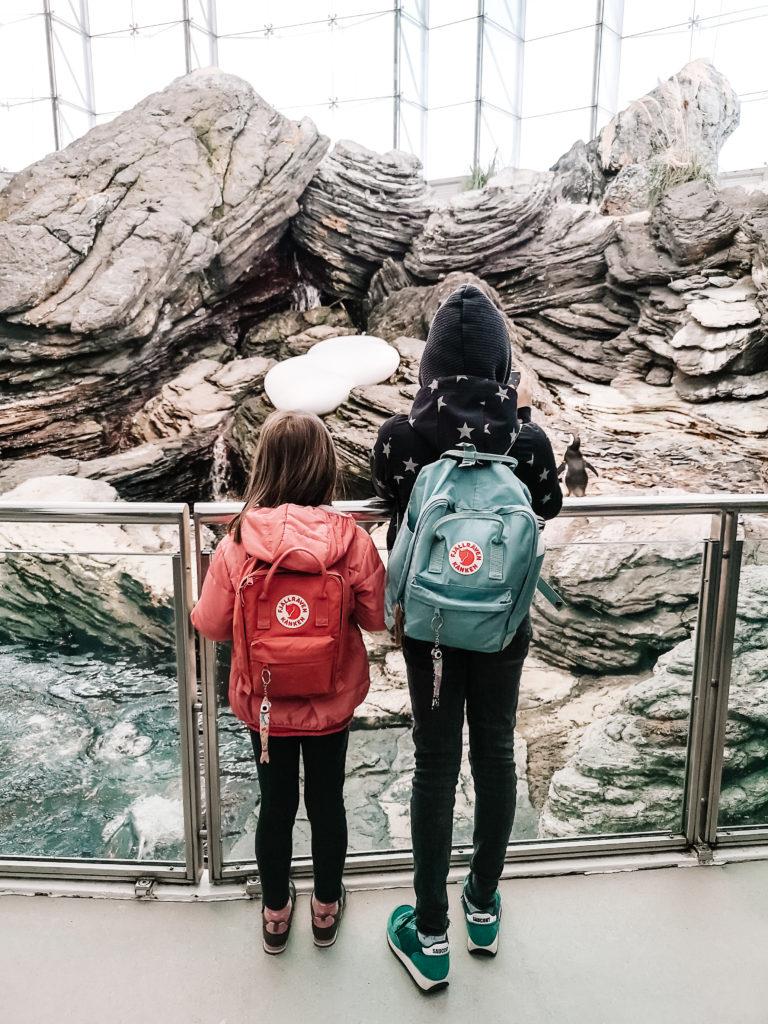 plecaki Kanken dla dzieci