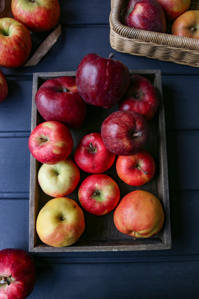 odmiany polskich jabłek
